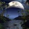 luna1310's picture